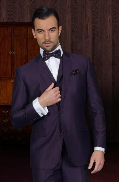 Two Button Style Mens Plum Business Slim Fit Suit, act now only $175.00